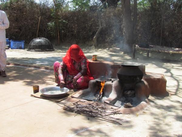 Bishnoi village 2013